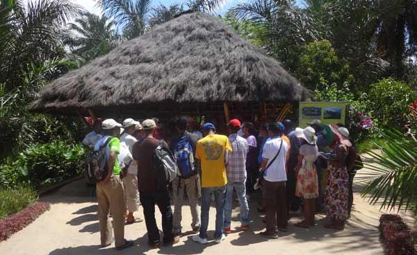 La Palmerais de Melville, un exemple de réussite exceptionnel à Madagascar. Les membres du FCA ont énormément après de l'étude de cas.